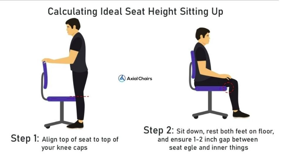 ideal seat height
